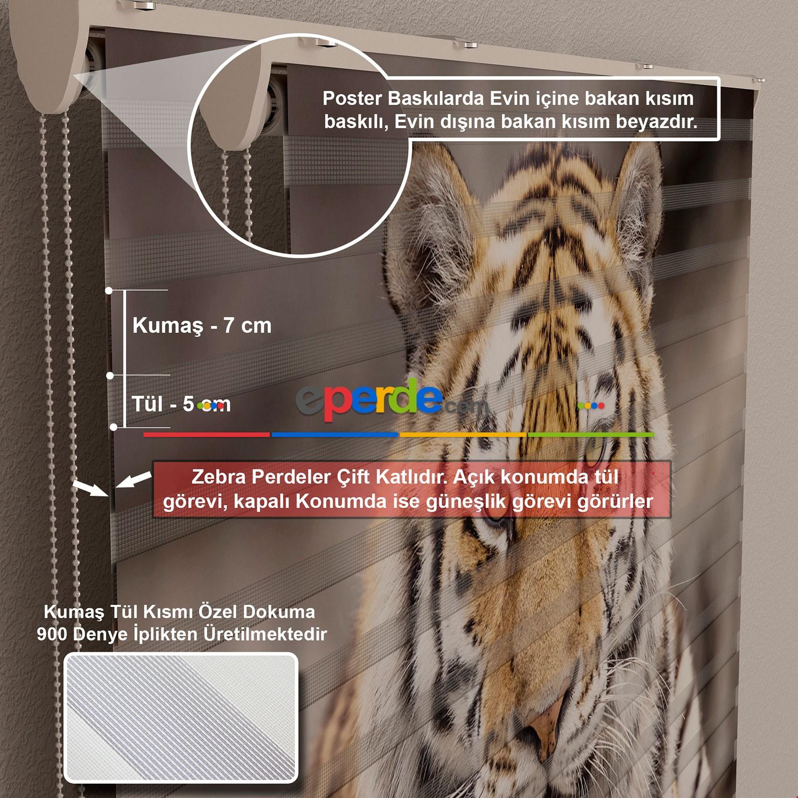Karlar Ülkesi Özel Poster Baskılı Zebra Perde