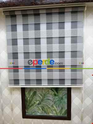 Salon Zebra - Renkli Zebra Stor- Krem