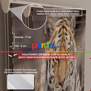 Abstract Art Boyama Kadın Figürü Baskılı Zebra Perde Eperdecom